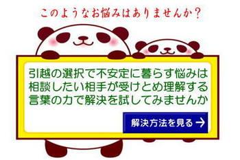 imagenayami.jpg